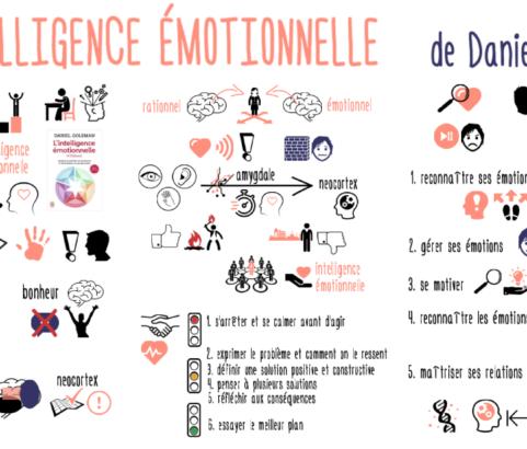 Intelligence émotionnelle : pourquoi elle est plus importante que le Q.I. de Daniel Goleman